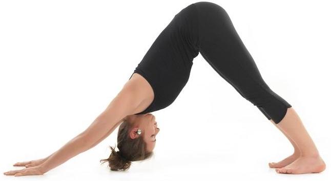 exercice chien yoga