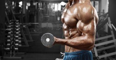 grandir musculation