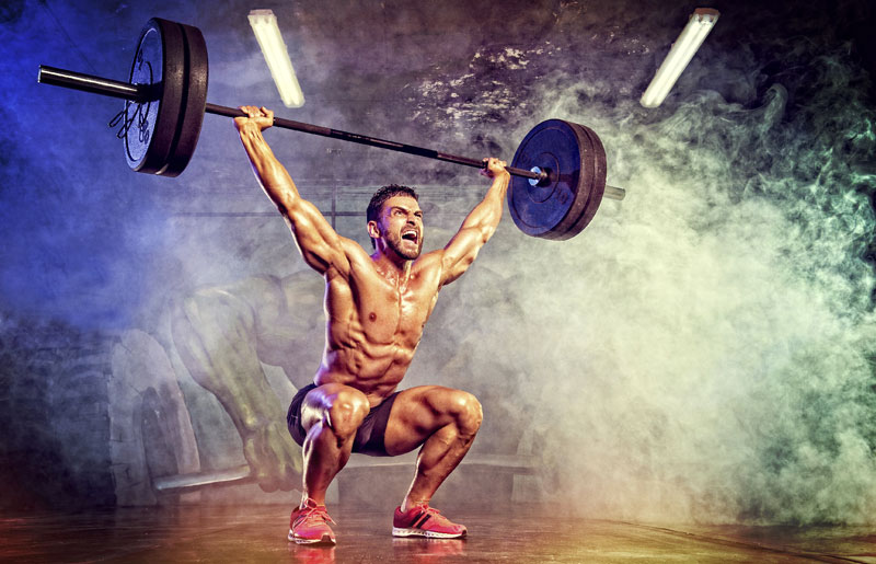 taille musculation